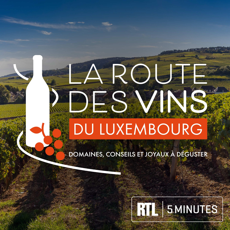 RTL 5minutes - La Route des Vins du Luxembourg - Domaines viticoles, conseils oenologiques et joyaux à déguster